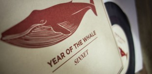 Sinnet - Year Of The Whale (2013)