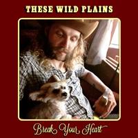 These Wild Plains - Break Your Heart